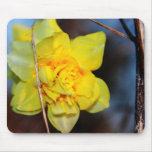 Buttercup Mouse Pad