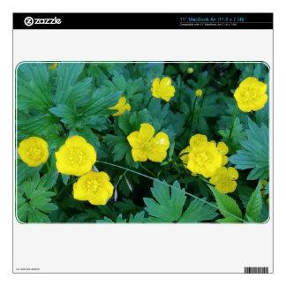 """Buttercup Theme 11"""" MacBook Air (11.8 x 7.56) MacBook Skin"""