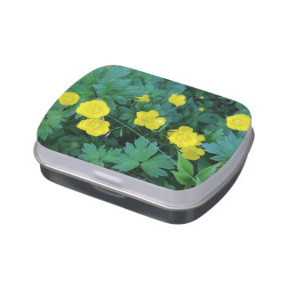 Buttercup Theme Jelly Belly™ Candy Tin