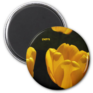 Buttercup Tulips 2 Inch Round Magnet