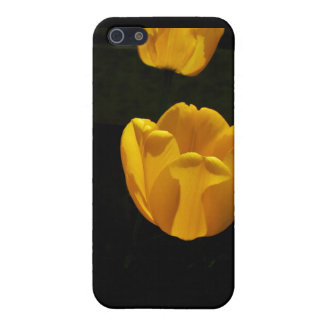 Buttercup Tulips Covers For iPhone 5