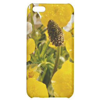 Buttercups and grass head flowers iPhone 5C cases