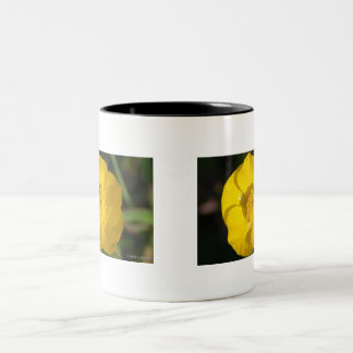 Buttercups Two-Tone Coffee Mug