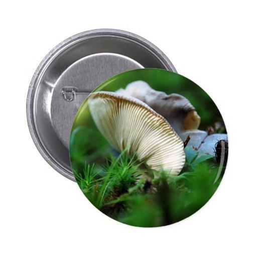 Butterflied Pins