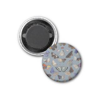Butterflies, 1842 1 inch round magnet