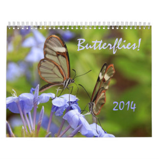 Butterflies! 2014 Photo Calendar