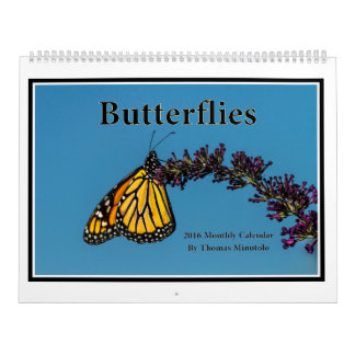 Butterflies 2016 Monthly Calendar By Tom Minutolo