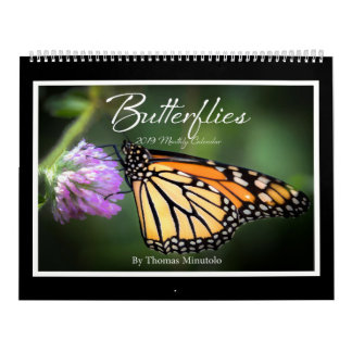 Butterflies 2019 Monthly Calendar By Tom Minutolo