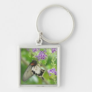 Butterflies and Flowers  Keychain