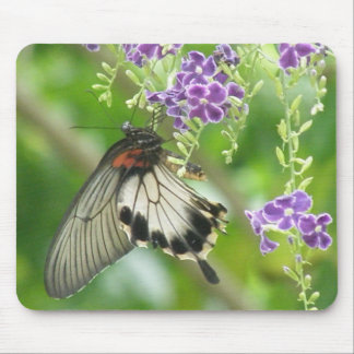 Butterflies and Flowers  Mouse Pad