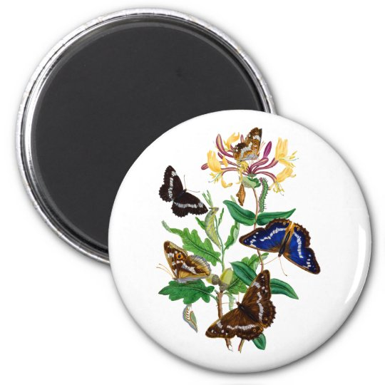 Butterflies and Red Honeysuckle Magnet