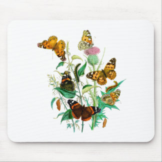 Butterflies and Thistle Mouse Pad