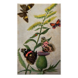 Butterflies and Thistle Print