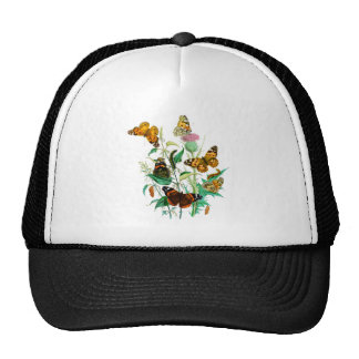 Butterflies and Thistle Trucker Hat
