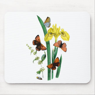 Butterflies and Yellow Iris Mouse Pad