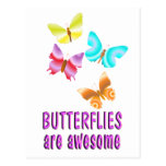 Butterflies are Awesome Post Card