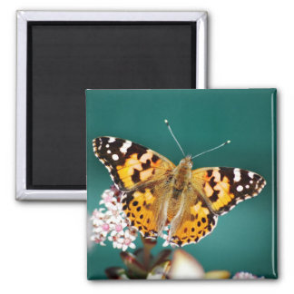 Butterflies are free 2 inch square magnet