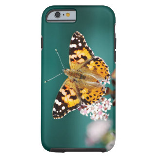Butterflies are free tough iPhone 6 case