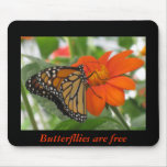 Butterflies are free mouse pads