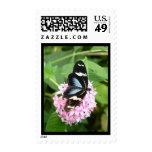BUTTERFLIES ARE FREE POSTAGE STAMPS