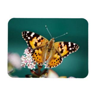 Butterflies are free rectangular photo magnet