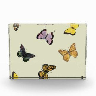Butterflies Award