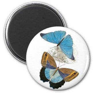 Butterflies - Blue 2 Inch Round Magnet