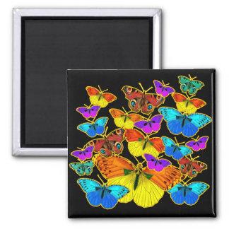 Butterflies! Butterflies!  Magnet