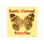 Butterflies by Kevin Atwood Postcard