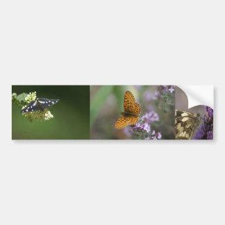 butterflies car bumper sticker