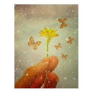 Butterflies Charmer Postcard