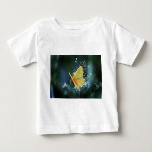 butterflies colours of rainbow shirt