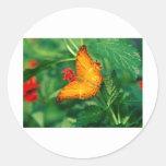butterflies cruiser malaysia sticker