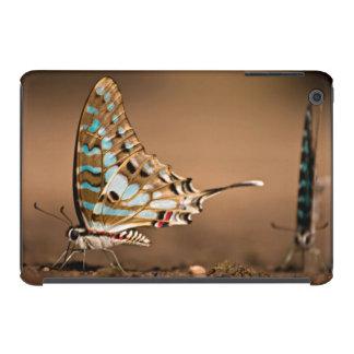 Butterflies Drinking Water, Close-Up, Punda iPad Mini Retina Case