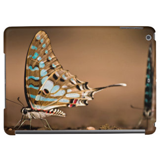 Butterflies Drinking Water, Close-Up, Punda iPad Air Cases