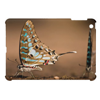 Butterflies Drinking Water, Close-Up, Punda iPad Mini Cases