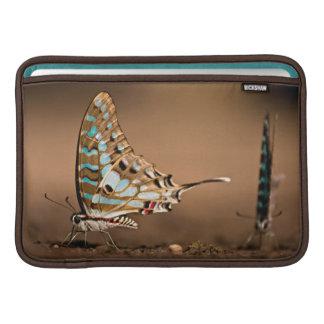 Butterflies Drinking Water, Close-Up, Punda Sleeve For MacBook Air