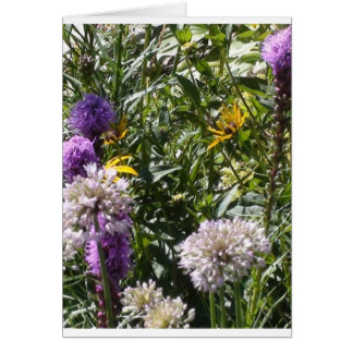 Butterflies & Flowers Greeting Card