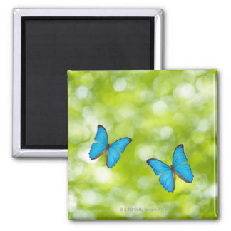 Butterflies flying, Digital Composite 2 Inch Square Magnet