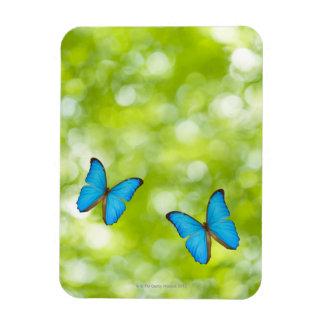 Butterflies flying, Digital Composite Rectangular Photo Magnet