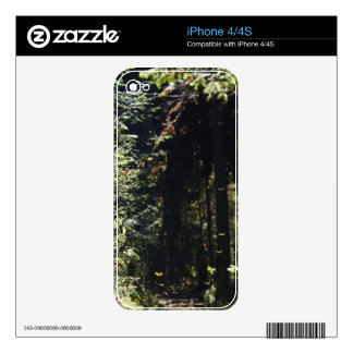 Butterflies flying in forest iPhone 4S skin