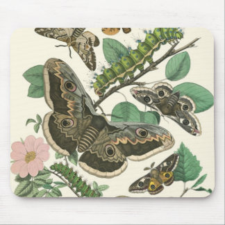 Butterflies & Garden Foliage Mouse Pad