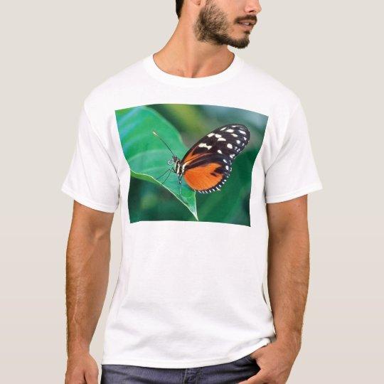 butterflies golden helicon T-Shirt