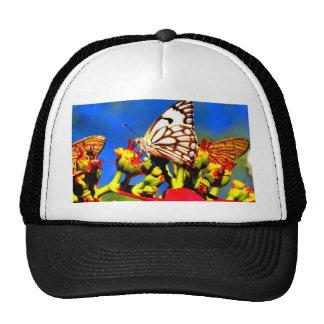 butterflies harvest sweet and peace trucker hat