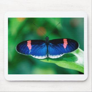 butterflies heliconius erato mouse mats