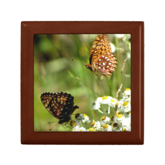 Butterflies in Spring Gift Box