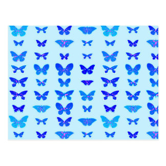 Butterflies, indigo, sky blue background postcard