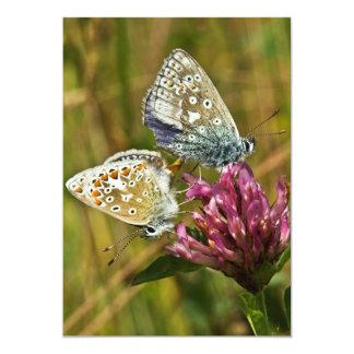 Butterflies Invitation