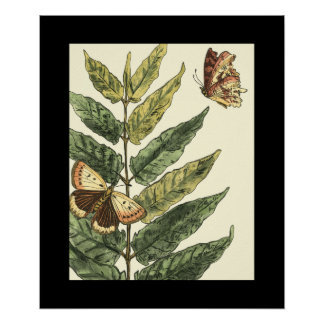 Butterflies & Leaves with Black Frame Poster