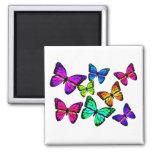 Butterflies Magnet